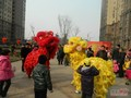 中海会元宵节欢乐园