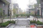 金融街园中园实景图