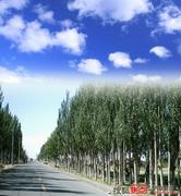 八里桥纸制品产业园