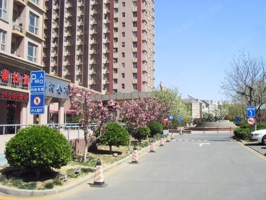 金桥国际酒店公寓