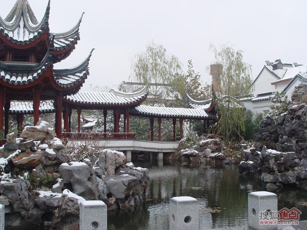 图:南方情调绽放雪中——记苏园雪景-龙山新新小镇