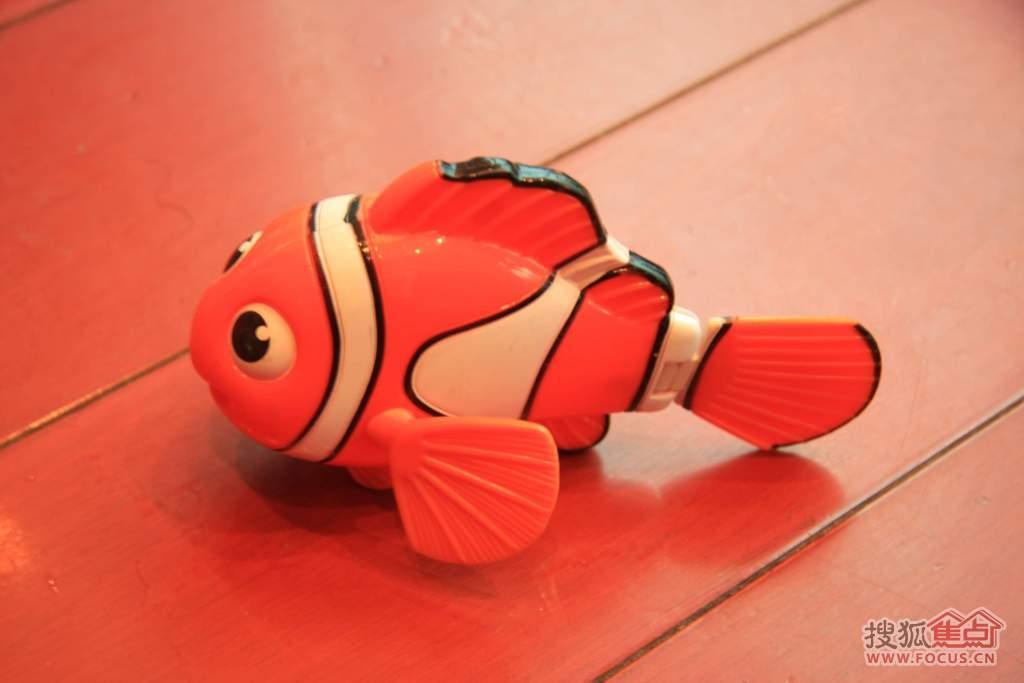 小丑鱼简笔画图片大全 小丑鱼简笔画大全大图 卡通小丑鱼简笔画大全
