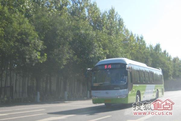 图说秋日富力湾 915路公交车高清图片