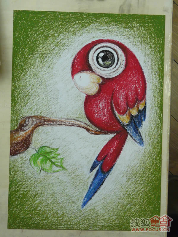 鹦鹉重彩油画棒画步骤