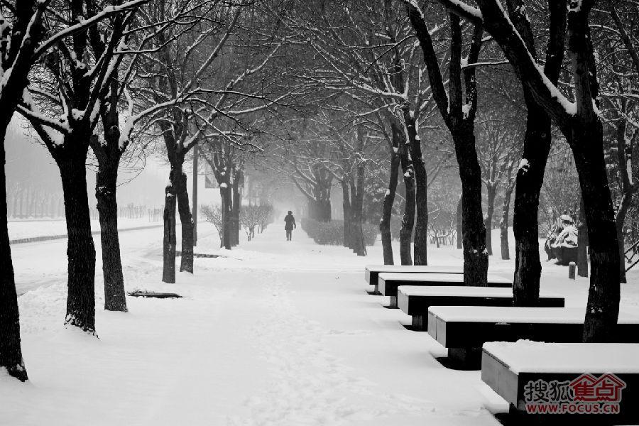 孔雀城的雪和雪中可爱的人