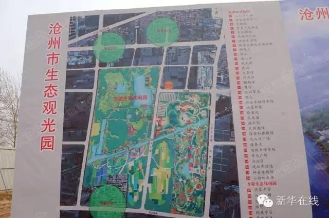 沧州新动物园建得咋样了?一起来看看最新进展,实景多图!