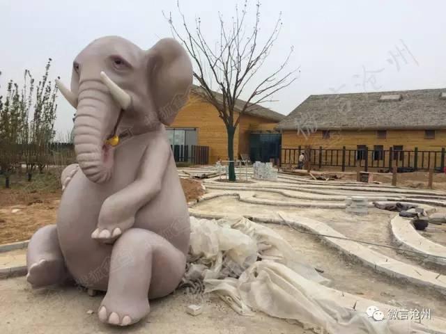 新沧州动物园雏型已现,大量内部图片让你先睹为快