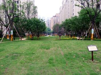 实拍公园置尚1881洋房 高清图片