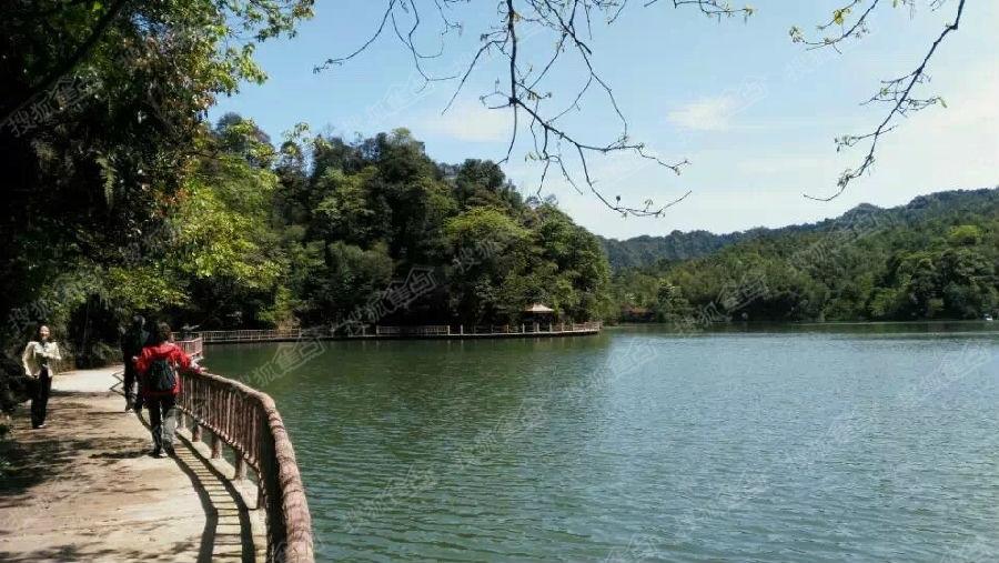 养生避暑胜地,贵州赤水天岛湖
