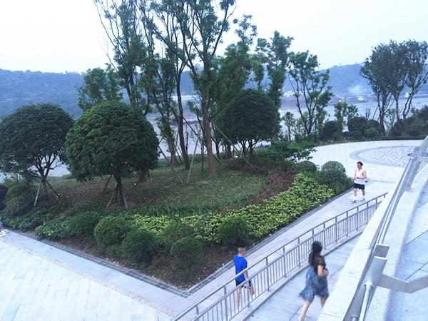 通往茶花广场的景观道路也基本竣工了,其实还在修建的时候包括我在内