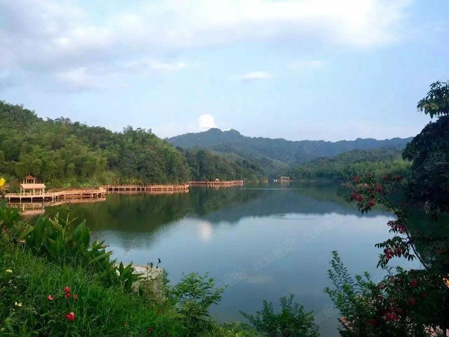 贵州赤水天岛湖158235028025 18580683786 小罗