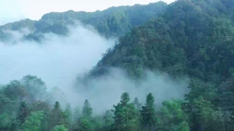 贵州赤水天岛湖推出最新房源,养生避暑的首选地!