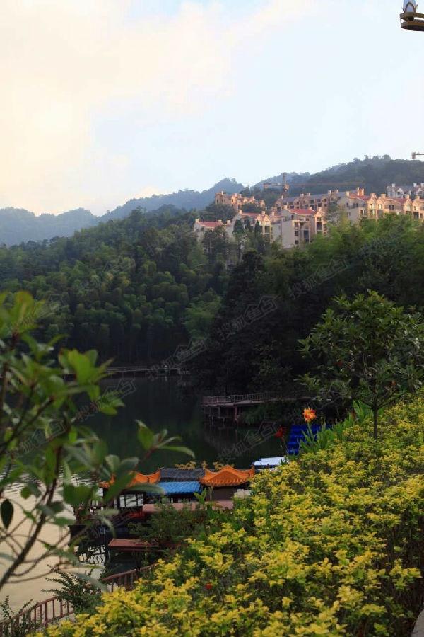 贵州赤水高端养生避暑房——天岛湖