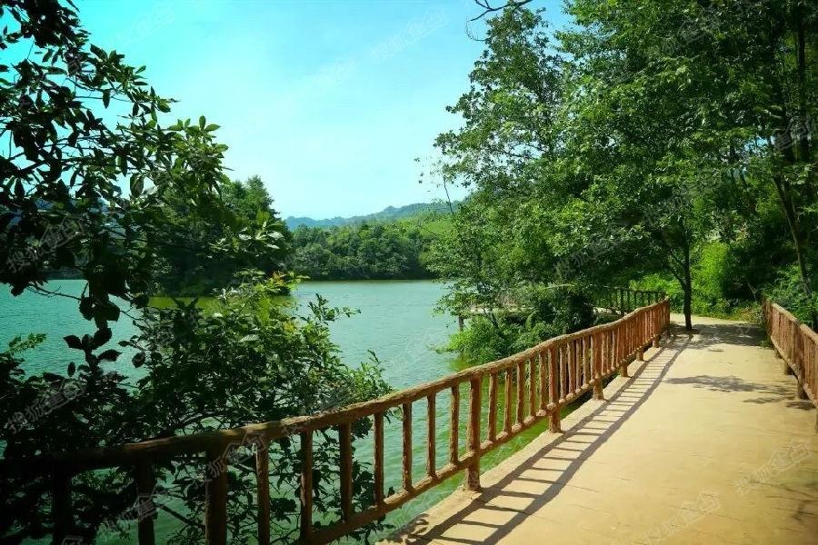 贵州赤水天岛湖 ,养生避暑胜地,有意联系15213262634