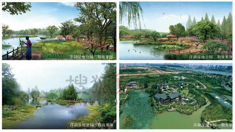 洋湖湿地公园效果图