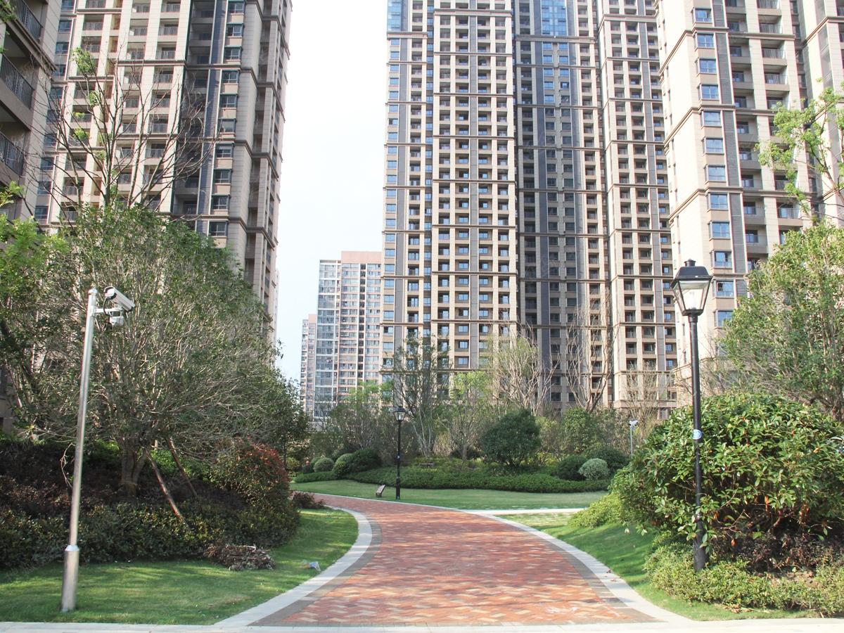 弘阳广场小区绿化景观实景图
