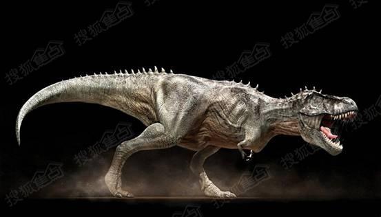 比电影更加真实的画面,更神秘的恐龙喘息声!