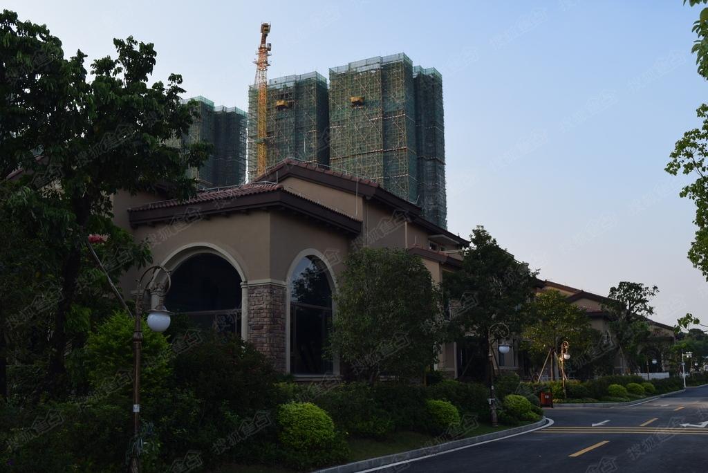 碧桂园豪庭实景图 别墅外观