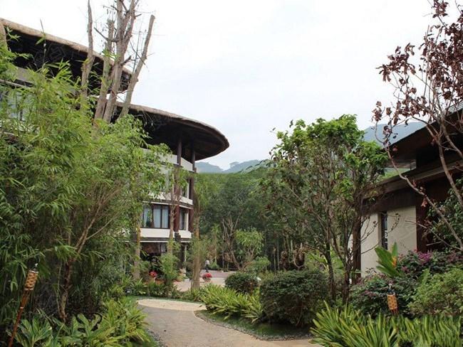 海南保亭那香山 雨林之心 秘境别墅图片
