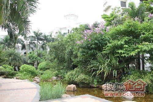 盛高荣域小区实景图 花园设计得真不错啊