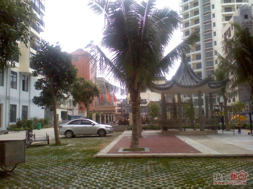 三亚椰岛阳光花园图片