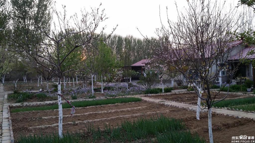 春天小院 - znx123000 - 心语小院