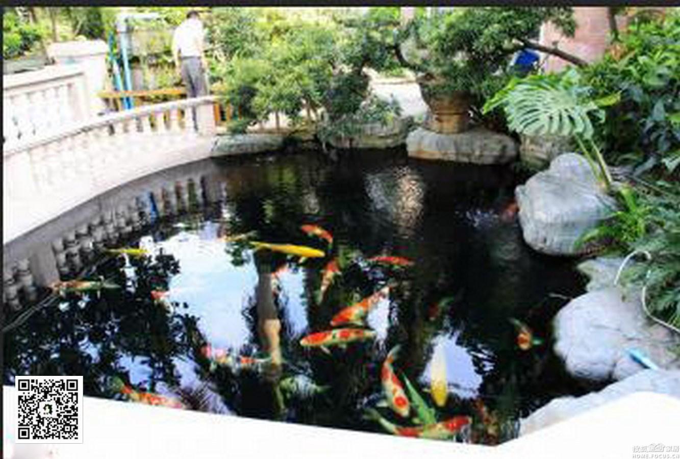 别墅庭院景观假山鱼池的施工工艺图片