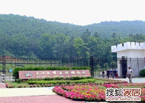 图:武汉九峰山森林动物园一日游