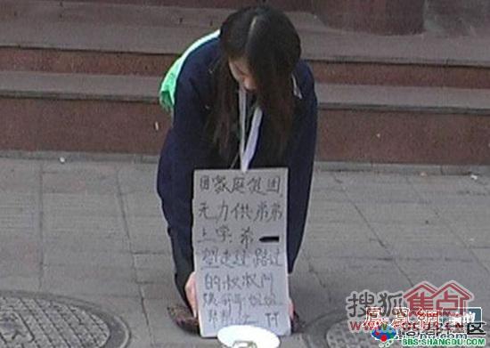 街头惊现美女乞丐图片