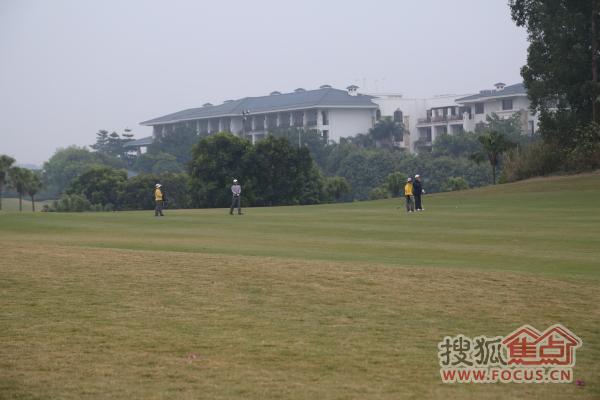 假日半岛高尔夫球场出场