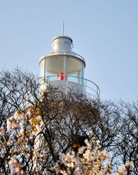 小青岛灯塔涂新装 肤白如凝脂熠熠生辉