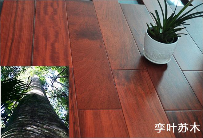 暗红色地板配窗帘图暗红色门配复合地板的效果图图片4