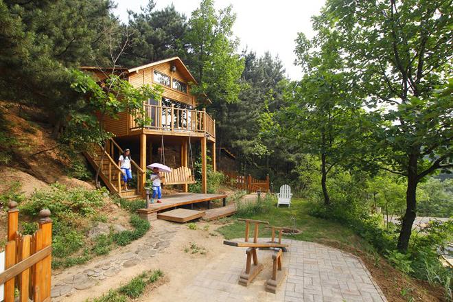 北京云峰山景区最近推出的童话树屋引起了游客的极大兴趣.