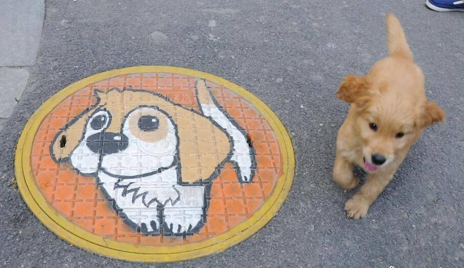 吕梁市离石一中附近的道路井盖上出现了不少手绘的可爱卡通形象,将
