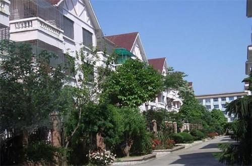 中国农村也有这样的别墅 丝毫不会比美国房差
