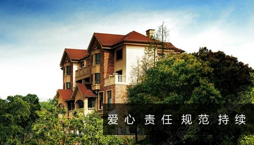 """随后,其开发的""""美利山十五庄园""""法式大独栋别墅一经推出,即受到市场图片"""