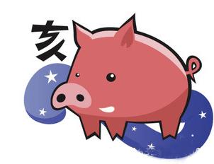 2015年属猪人的运程-羊年十二生肖风水运势大预测