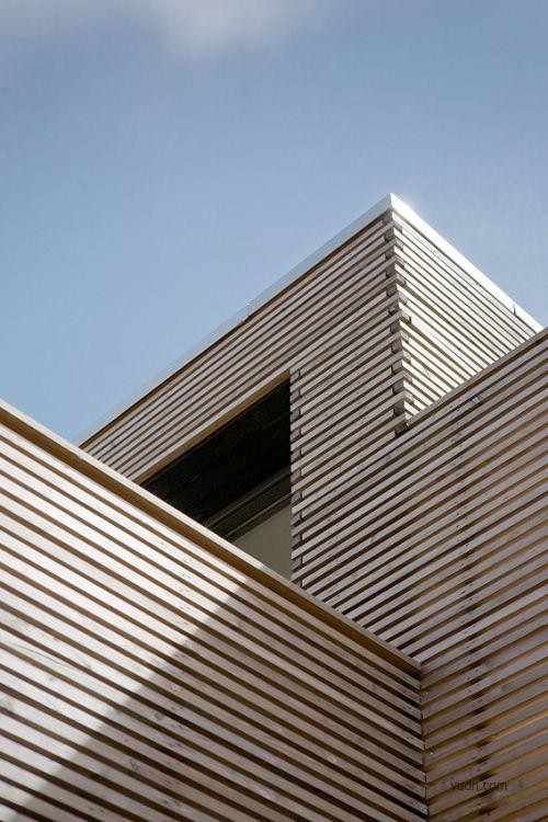 荷兰木材住宅  -荷兰木质屋顶花园别墅