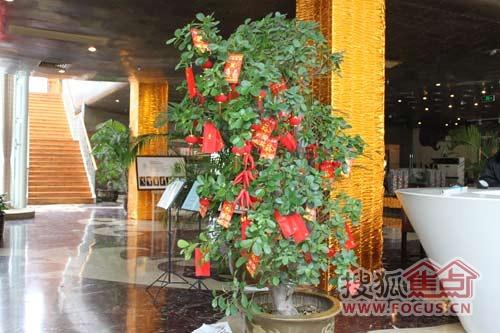 从大红灯笼高高挂,到喜庆的红色树挂;从销售中心门前