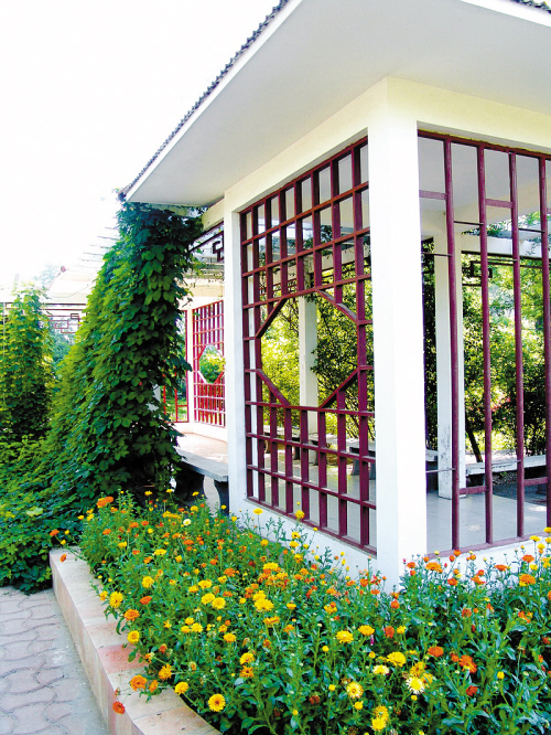 理想冰箱是别墅的延伸和微缩,亲近自然,回归自然的专用庭院在园林里生活别墅别墅图片