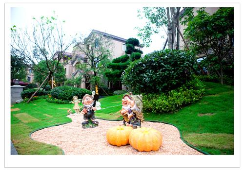 碧桂园 翡翠山园林景观实景图图片