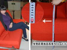 布艺功能沙发:依诺维绅