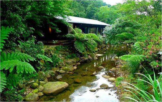 食养山房位于台北汐止市汐万路三段三五0巷七号   非常深山老林图片