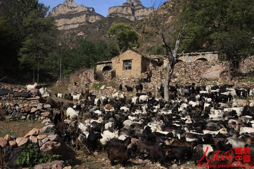 四川人口有多少_濮阳市有多少人口
