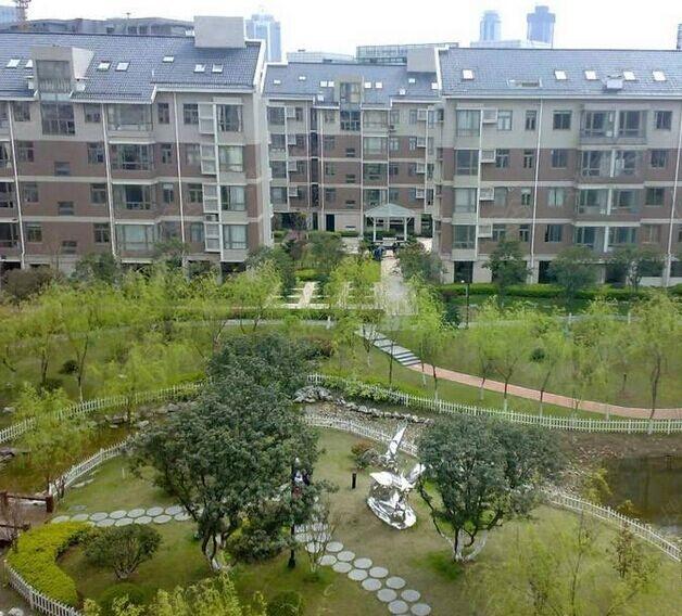 奥体新城木樨园