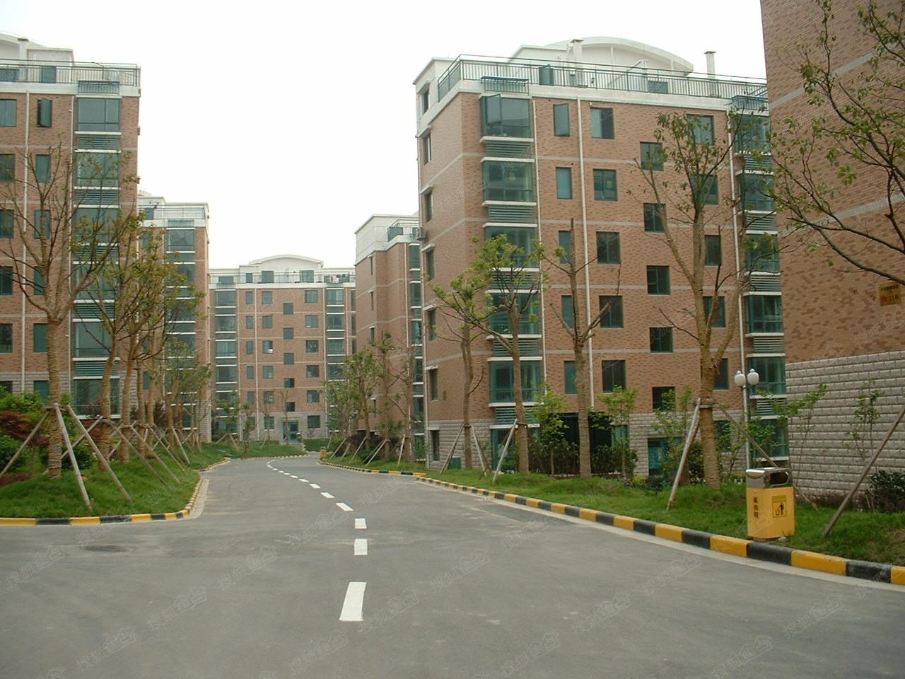 中南麒麟锦城