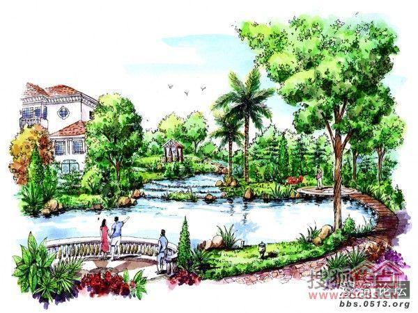景观植物配置设计手绘图