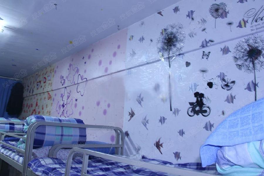 大学生用废旧材料装饰宿舍 温馨干净如小家图片