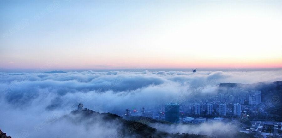 青岛现平流雾景观 云中城市如海市蜃楼