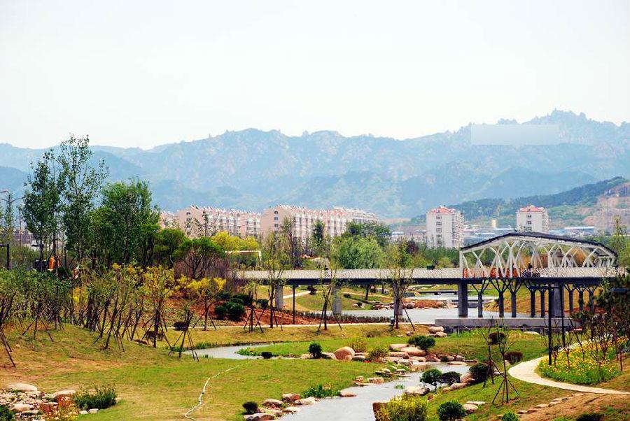 李村河从臭水沟变景观绿带 柳绿水清-地产八卦-青岛